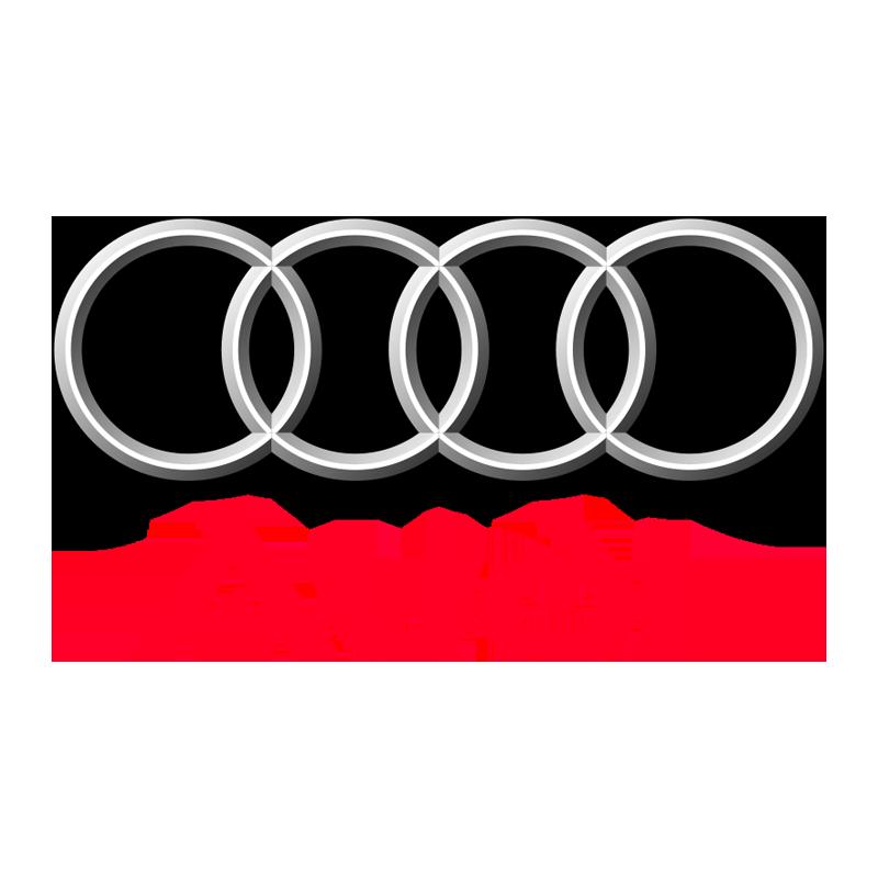 Audi Wind Deflectors