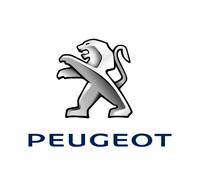 Peugeot Car Mats